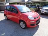 FIAT Panda 1200 EASY 69 CV 5 POSTI STEREO CD RUOTINO ITALIANA