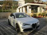 ALFA ROMEO Stelvio 2.2 Turbodiesel 190 CV AT8 Q4 Executive